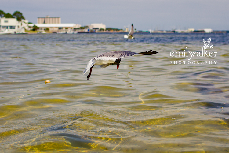 Emily-walker-photography-travel-florida-19