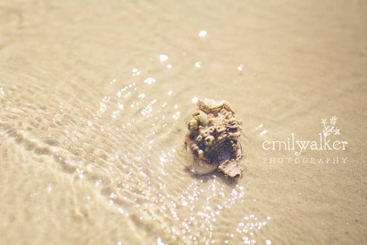 Emily-walker-photography-travel-florida-22