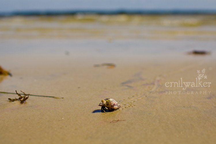Emily-walker-photography-travel-florida-23