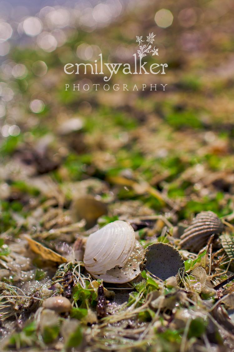 Emily-walker-photography-travel-florida-25